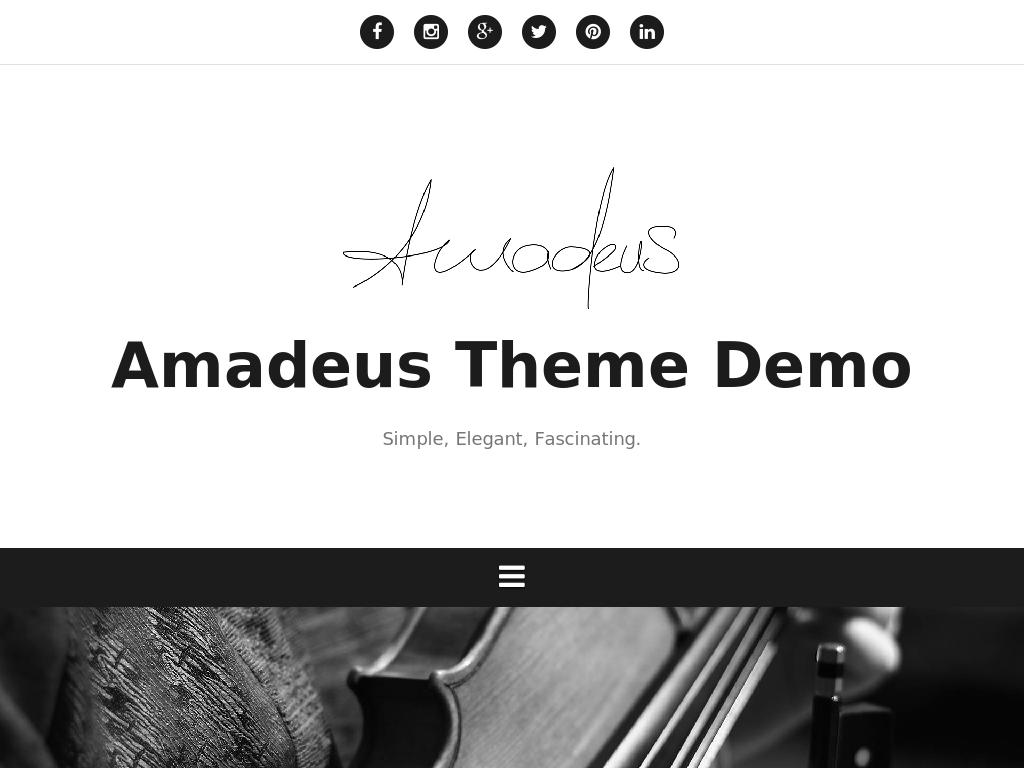 Amadeus - WordPress