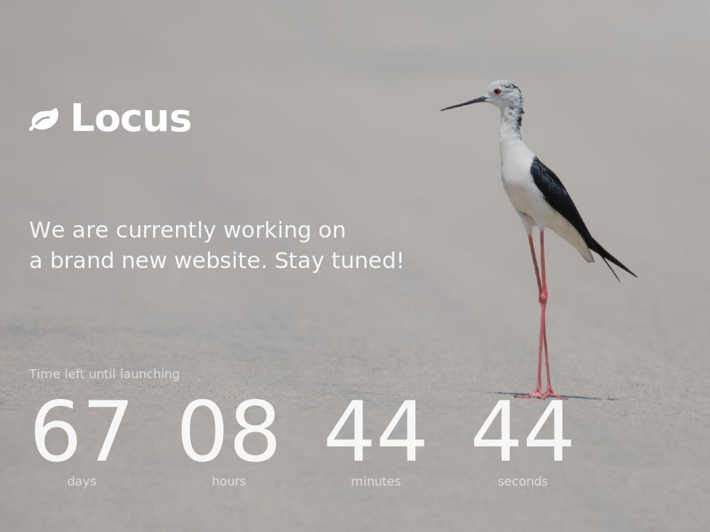 Locus - Заглушка