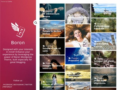 Boron - WordPress