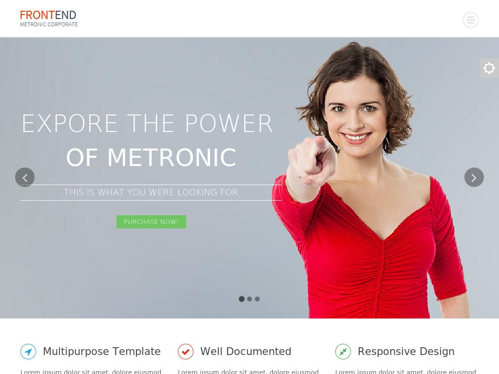Metronic Frontend