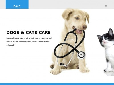 Dogs and Cats Clinic