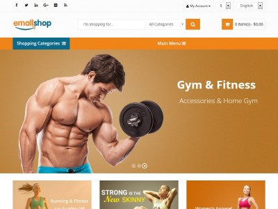 EmallShop - WordPress