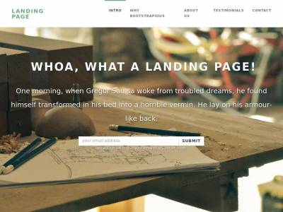 Landing Page Bootstrapious