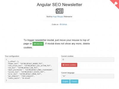 Angular Seo Newsletter