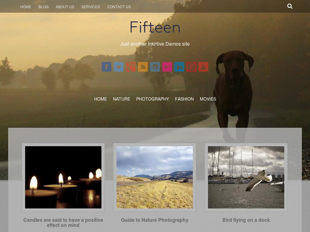 Fifteen - WordPress - Портфолио