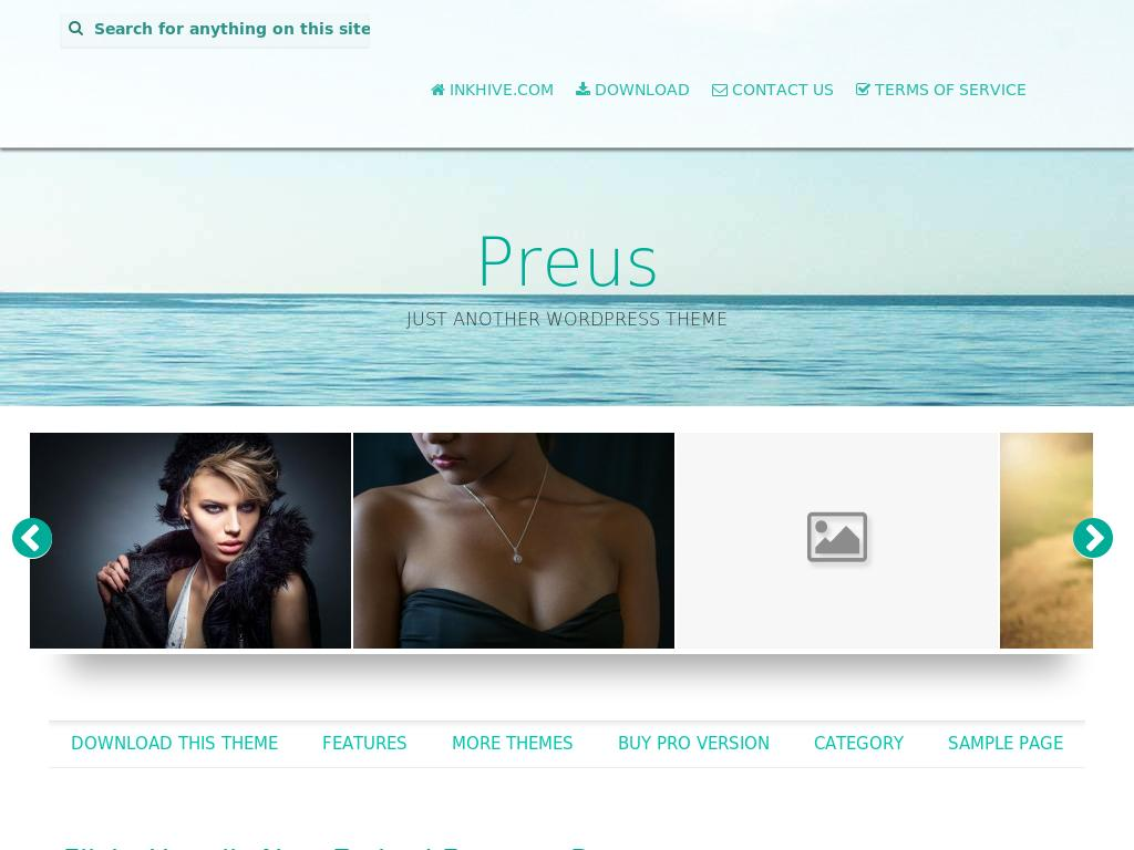 Preus - WordPress - Блог