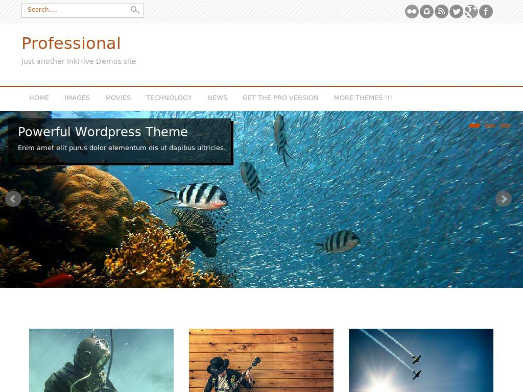 Professional - WordPress