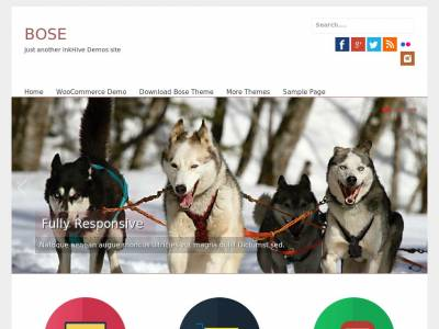 Bose - WordPress