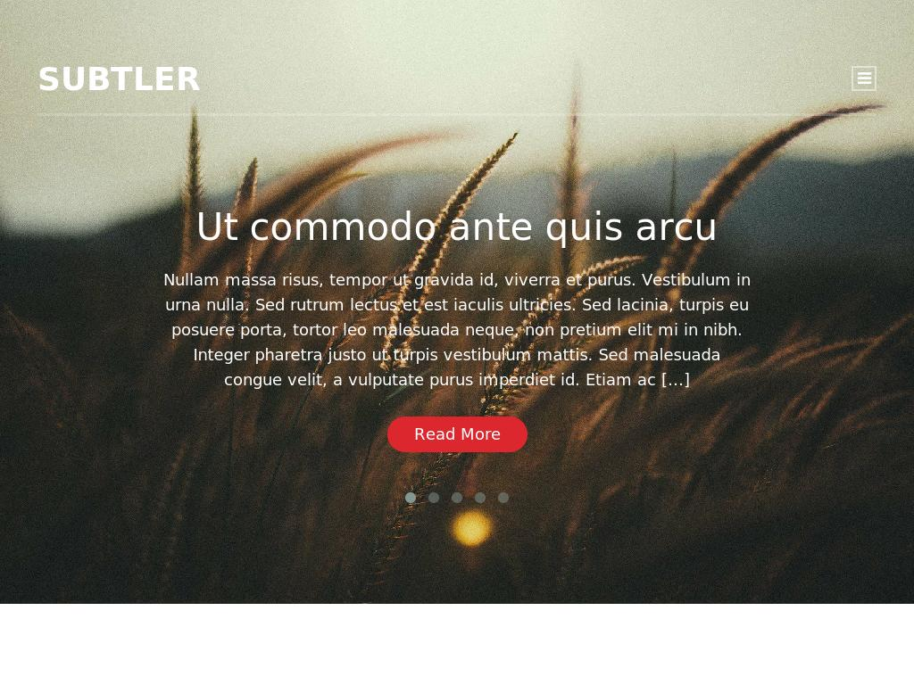 Subtler - WordPress - Блог